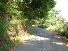 Kings Ridge-1.3 mile steep grades