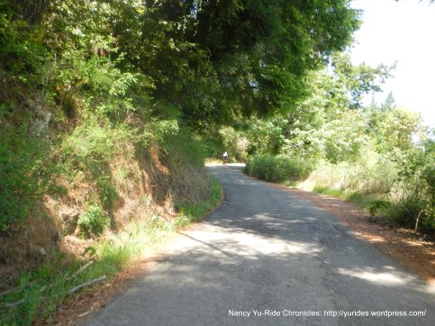 Kings Ridge-1.3 mile steep grades