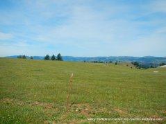 expansive hilltop meadows
