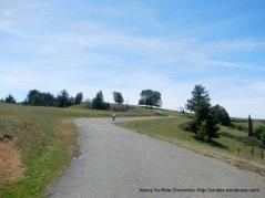 Kings Ridge-rolling terrain