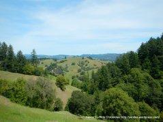 valley & hills