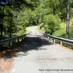 narrow iron grate bridge over Gualala River