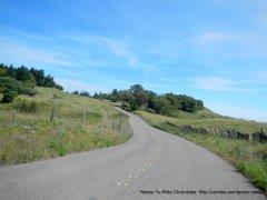 Ft Ross Rd-ridge top