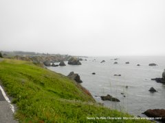 craggy shoreline