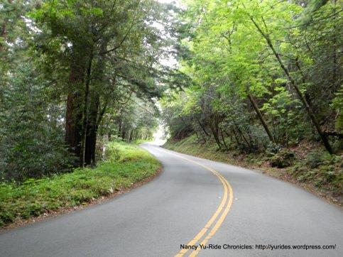 Old La Honda climb-avg 7.3% grade