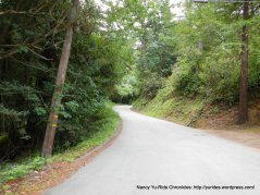 Old La Honda-winding thru the woods