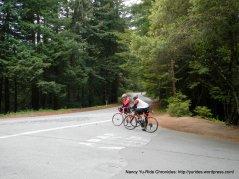 Tunitas Creek summit @ Skyline