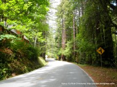Pescadero Creek Rd-avg grade 6.7%