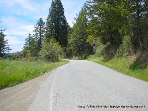 Pescadero Creek Rd