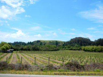valley farmland
