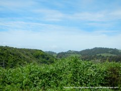 green valley & hills