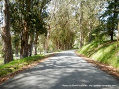 descend Stage Rd to San Gregorio