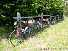 at the Bike Hut
