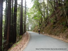 upper Tunitas Creek Rd-avg grade 3%