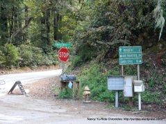 Tunitas Creek summit