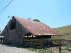 cattle barn-pen