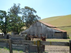 cattle ranch barn
