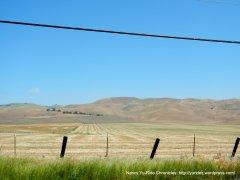 cut hay field