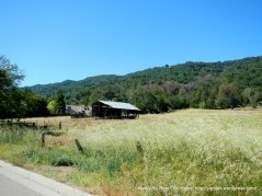 Pleasanton ranch