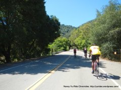 Calaveras Rd-Welch Creek xing