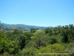 Calaveras landscape