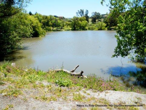 Spring Valley Pond