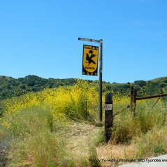 new A Ranch sign