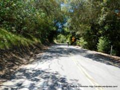 Steep climb up McEwen Rd 12-15%