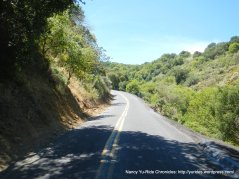 Steep climb up McEwen Rd 12-15%-narrow road