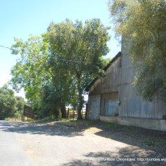 steel cattle barn