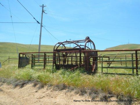 cattle pen area