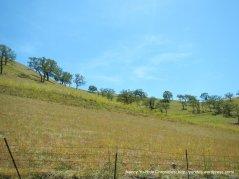 highland hillsides