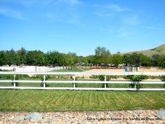 equine center