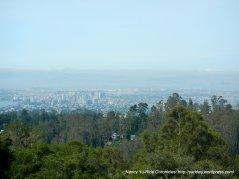 East Bay views