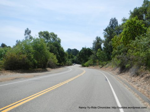 Redwood Rd-level section