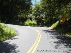 Pinehurst-hairpin turn