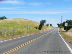 Pleasants Valley Rd