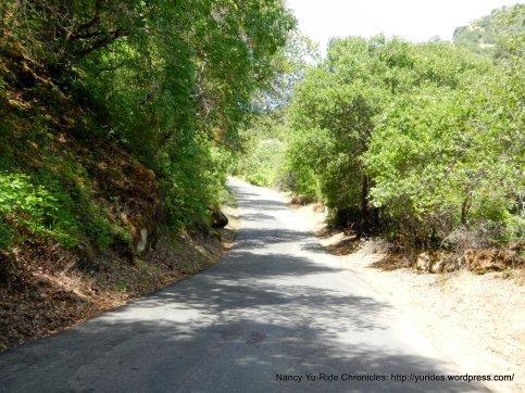climb up Mix Canyon