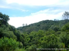 Vaca Mtns landscape