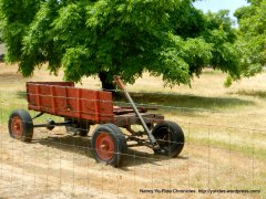 old red wagon