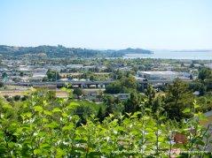 view of San pablo Bay & San Rafael