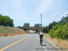 Putah Creek Rd-I-505 underpass