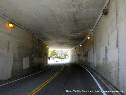 Alexander Ave tunnel
