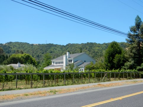 Alhambra Valley Rd-front yard vineyards