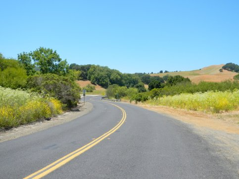 to Castro Ranch Rd