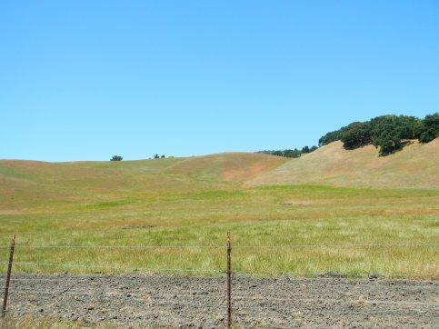 Sobrante Ridge