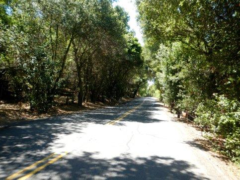 descend Bear Creek Rd