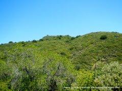 green mountain slopes