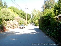 Bike Rte 20-San Anselmo Ave