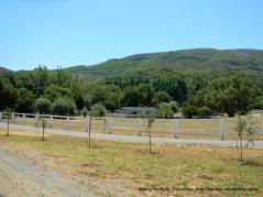 Mt George ranch